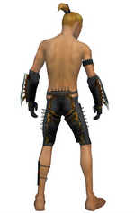 Assassin Exotic armor m gray back arms legs.png