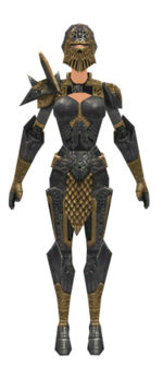 Warrior Elite Platemail armor f dyed front.jpg