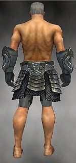 Warrior Elite Templar armor m gray back arms legs.jpg