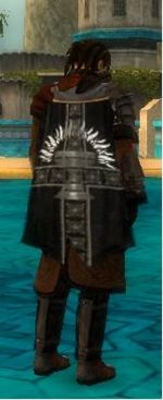 Guild Northern Wolf Clan cape.jpg