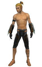 Assassin Exotic armor m gray front arms legs.png