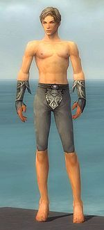 Elementalist Monument armor m gray front arms legs.jpg