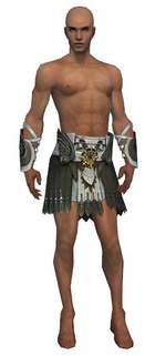Paragon Elite Sunspear armor m gray front arms legs.png