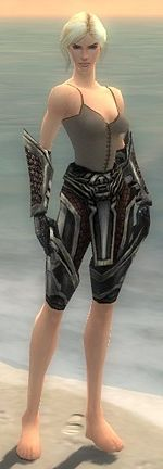 Warrior Elite Kurzick armor f gray front arms legs.jpg