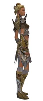 Paragon Norn armor f dyed right.png