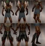 Necromancer Primeval armor m brown overview.jpg