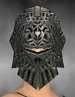 Warrior Elite Platemail armor f gray front head.jpg